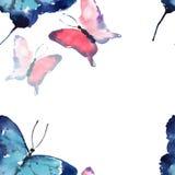 Acquerello variopinto del modello di farfalle della bella molla delicata tenera meravigliosa magnifica specializzata sveglia Fotografia Stock Libera da Diritti