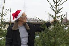 Acquisto dell'albero di Natale immagine stock libera da diritti