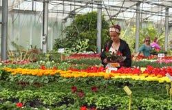 Acquisto della signora per i fiori immagini stock libere da diritti