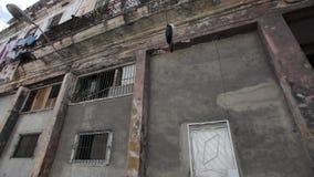 Acquisto della via a Avana, Cuba stock footage