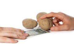 Acquisto delle merci in Ue Immagine Stock Libera da Diritti