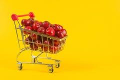 Acquisto vegetariano fotografia stock libera da diritti