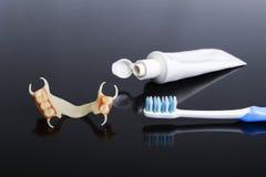 Acrílico líquido da dentadura do fecho Imagens de Stock