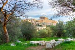 Acrópole com Partenon Vista através de um quadro de plantas verdes, de árvores e de mármores antigos, Atenas imagens de stock royalty free