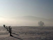 Acre in de sneeuw royalty-vrije stock foto