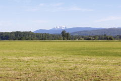 Acreage in the Fraser Valley Royalty Free Stock Image