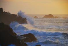 Acres da costa Imagens de Stock Royalty Free