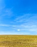 Acres after harvest under blue sky Stock Images