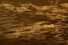 Acricultural-Ernte-Meeresfrüchtebauernhof auf Sonnenuntergang reflektieren dichtes flaumiges P Stockfotografie