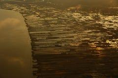Acricultural-Ernte-Meeresfrüchtebauernhof auf Sonnenuntergang reflektieren dichtes flaumiges P Stockbilder
