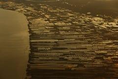 Acricultural-Ernte-Meeresfrüchtebauernhof auf Sonnenuntergang reflektieren dichtes flaumiges P Lizenzfreie Stockfotos