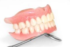 Acrilic dentures. Acrylic dentures whit mmirror on white background stock images