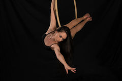 Acrobat. Petite young brunette on an aerial ring Stock Photography