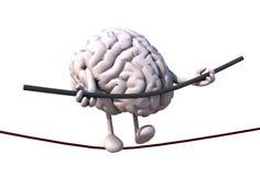 Acrobata del cervello che cammina su un cavo Immagini Stock