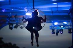Acrobates aériens de cercle de Seaworld Australie photographie stock