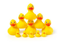 Acrobatic rubber ducks Royalty Free Stock Photos
