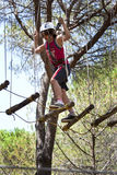 Acrobatics in the trees. Acrobatics of a boy in the trees stock photos