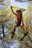 Acrobatics in the trees Stock Image