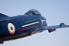Acrobatisch vliegtuig: Italiaans Leger royalty-vrije stock foto's