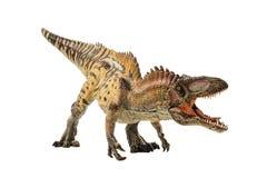 Acrocanthosaurus, δεινόσαυρος στο άσπρο υπόβαθρο στοκ εικόνα με δικαίωμα ελεύθερης χρήσης