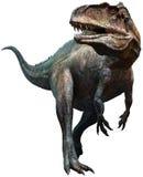 Acrocanthosaurus Arkivfoton