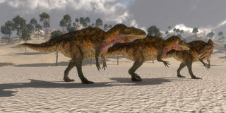 Acrocanthosaurus Dinosaurs Royalty Free Stock Photography