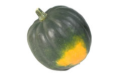 Acron Squash. A dark green Acorn winter squash with orange splotch Royalty Free Stock Photo