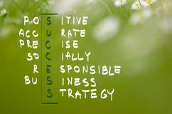 Acronym of success handwritten in dark green on natural green background Stock Photo