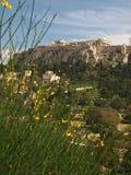 Acropoli 2 Immagine Stock Libera da Diritti