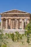 Tempie di Paestum Immagine Stock Libera da Diritti