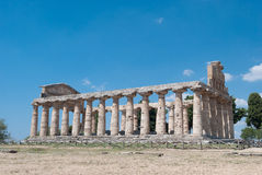Paestum Temples Royalty Free Stock Photo