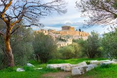 Acropolis with Parthenon. View through a frame of green plants, trees and ancient marbles, Athens. Acropolis with Parthenon. View through a frame of green Royalty Free Stock Images