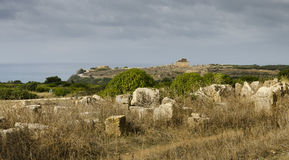Acropolis of Selinunte Royalty Free Stock Photography