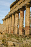Acropolis of Selinunte, Sicily Stock Photography