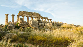 Acropolis of Selinunte, Sicily Stock Photos