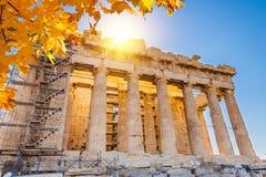 acropolisathens parthenon Royaltyfria Bilder