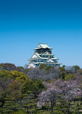 Across the blossom trees, Japanese castlein Osaka. WS: The rooflines  0f the Osaka castle in Japan stand above the luxurious bloosoms of the gardens.  Very Royalty Free Stock Photo