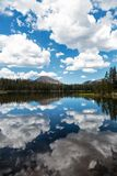 Across a Cloudy Sky. Reflections of the clouds and the sky as well as the mountains and pine trees on a mountain lake Royalty Free Stock Photo