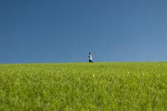 Across the meadow. A young boy walks across an open meadow with a bright blue sky royalty free stock photos
