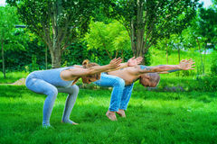 Acroyoga in a park Stock Photography