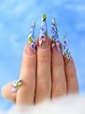 Acrylblumen auf den Nägeln der Frauen lizenzfreie stockbilder