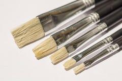 Acrylic Flat Paintbrush Royalty Free Stock Image