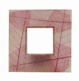 Acrylic frame Stock Images