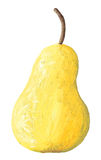 Acrylic illustration of pear Royalty Free Stock Image