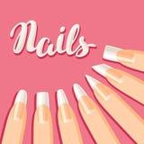 Acrylic nail shapes set. Various types of manicure Royalty Free Stock Photo
