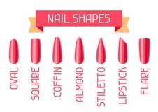 Acrylic nail shapes set. Various types of manicure Royalty Free Illustration