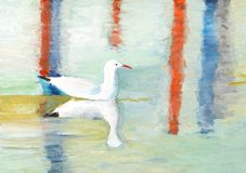 painting of a Seagull swimming Royalty Free Stock Photos
