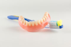 Acrylic removable prosthesis Stock Photo
