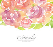Acrylic and watercolor flower painted background. Acrylic and watercolor rose flower painted background. Isolated Stock Photography
