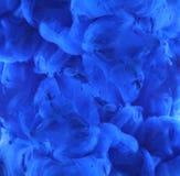 Acrylkleuren in water abstracte achtergrond Royalty-vrije Stock Fotografie